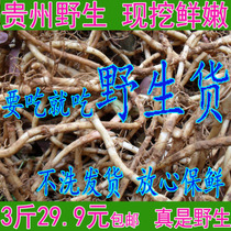 The Fresh Wild Festival root cold in Guizhou is dug and free of 3 Jin