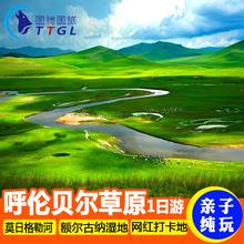 呼伦贝尔旅游大草原一日游海拉尔出发额尔古纳湿地莫日格勒亲子游