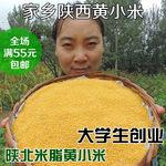 [小丁農家]黃小米月子米農家陜北米脂黃小米五谷雜糧小米粥500克