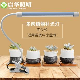宸华LED植物补光灯全光谱生长灯花卉绿植多肉盆景桌面夹子补光灯
