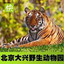 大兴野生动物园门票大人学生老人大门票北京野生动物园