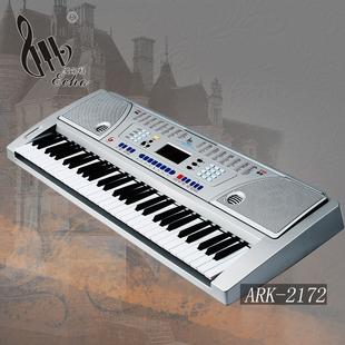 爱尔科61键电子琴多功能初学儿童电子琴标准钢琴键 ARK 2172