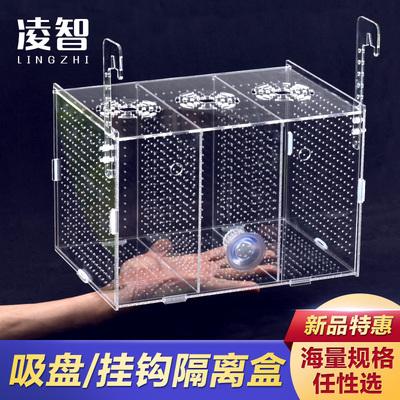 凌智 单双多格隔离盒 水族小鱼苗孵化繁殖箱透明 亚克力鱼缸包邮