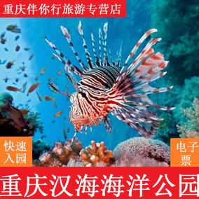 非主城区市民门票重庆汉海海洋馆 海洋公园门票极地海洋世界门票