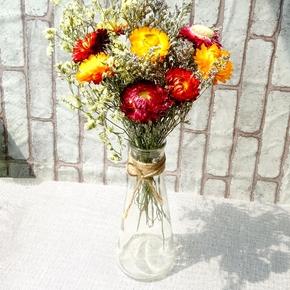 满天星干花太阳花小向日葵雏菊玻璃瓶花瓶麻绳风信子瓶蕾丝满包邮
