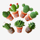 植物多肉创意相片留言磁吸铁石磁贴扣家居饰品 可爱冰箱磁性贴