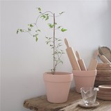 Homemade warm oil pale pink ceramic flower pots Korean chic modern minimalist indoor and outdoor potted plant universal