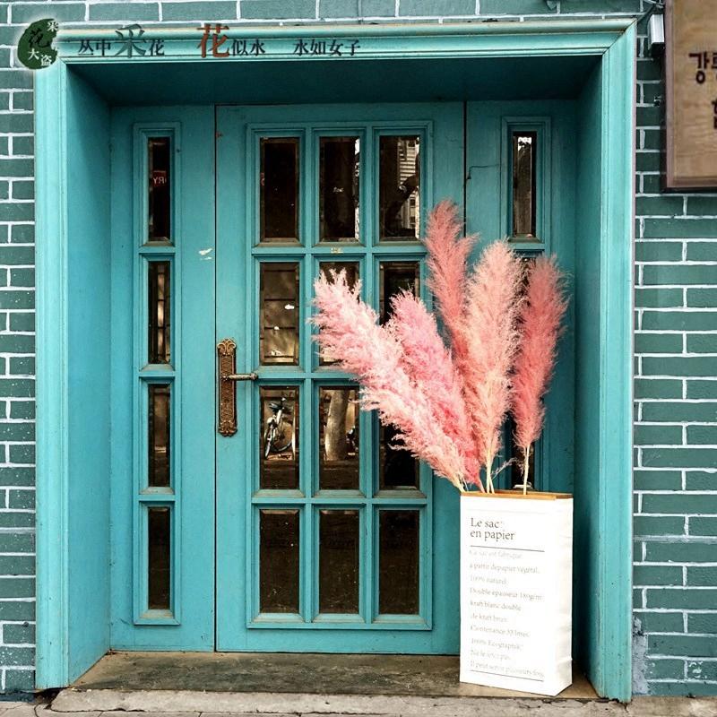 ins粉色芦苇干花花束大芦苇蒲苇干花装饰风干客厅落地家居摆设