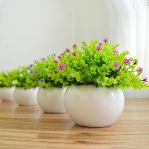 仿真绿植小盆栽 家居客厅摆设摆件 桌面装饰迷你假花仿真花草盆景