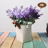 Garden home decoration flower pot multi-meat iron bucket iron small flower pot with holes in the living room bedroom dry flower arrangement potted